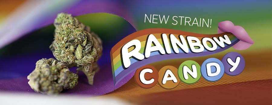 RainbowCandy_Pride-IMG_1055-slide_sm