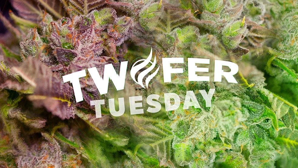 GNC-TwoferTuesday_Flower_web
