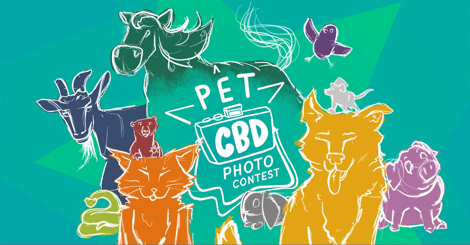 2021-PetCBD_PhotoContest-Entries_web-header